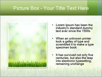 0000072059 PowerPoint Template - Slide 13