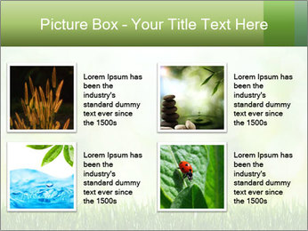 0000072059 PowerPoint Template - Slide 14