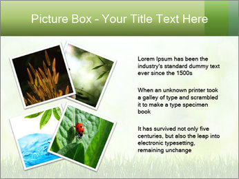 0000072059 PowerPoint Template - Slide 23