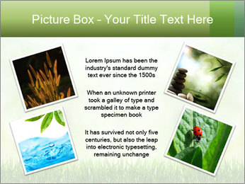 0000072059 PowerPoint Template - Slide 24