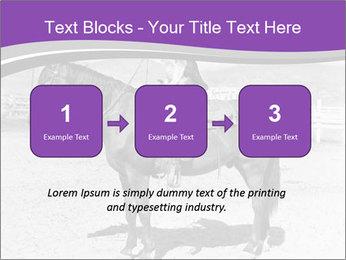 0000072060 PowerPoint Template - Slide 71