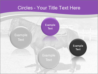 0000072060 PowerPoint Template - Slide 77