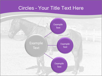0000072060 PowerPoint Template - Slide 79