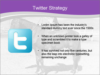 0000072060 PowerPoint Template - Slide 9