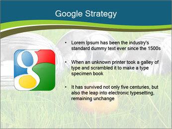 0000072064 PowerPoint Template - Slide 10