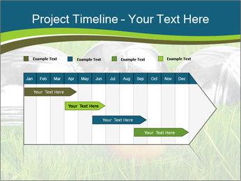 0000072064 PowerPoint Template - Slide 25