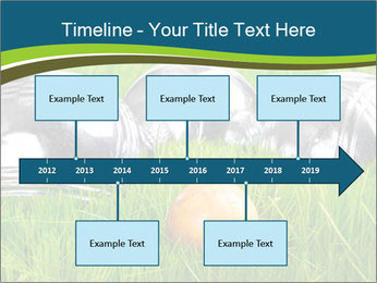 0000072064 PowerPoint Template - Slide 28
