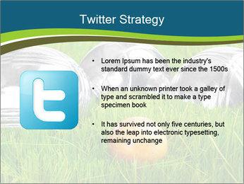 0000072064 PowerPoint Template - Slide 9