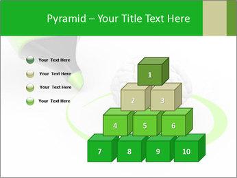0000072071 PowerPoint Templates - Slide 31