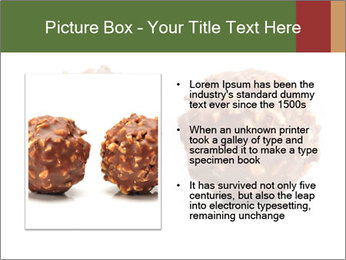 0000072076 PowerPoint Templates - Slide 13