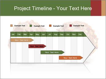 0000072076 PowerPoint Template - Slide 25