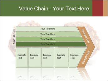 0000072076 PowerPoint Templates - Slide 27