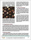 0000072077 Word Templates - Page 4
