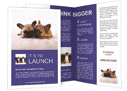 0000072079 Brochure Template