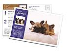 0000072079 Postcard Template