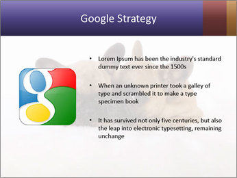 0000072079 PowerPoint Template - Slide 10
