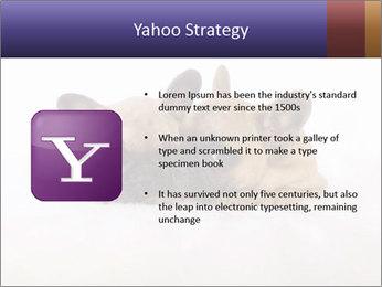 0000072079 PowerPoint Template - Slide 11