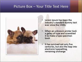 0000072079 PowerPoint Template - Slide 13