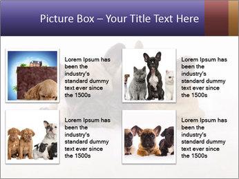 0000072079 PowerPoint Template - Slide 14