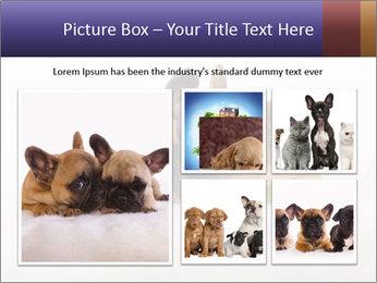 0000072079 PowerPoint Template - Slide 19