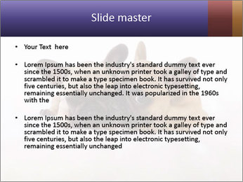 0000072079 PowerPoint Template - Slide 2