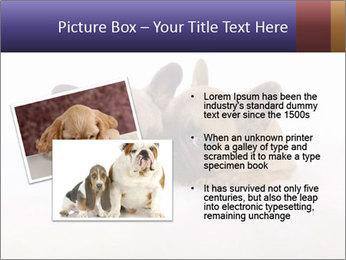 0000072079 PowerPoint Template - Slide 20