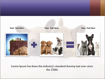 0000072079 PowerPoint Templates - Slide 22