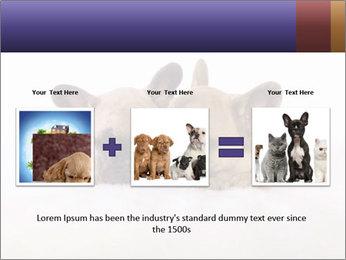 0000072079 PowerPoint Template - Slide 22