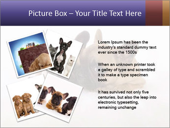 0000072079 PowerPoint Templates - Slide 23