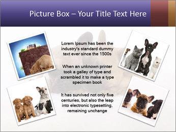 0000072079 PowerPoint Template - Slide 24