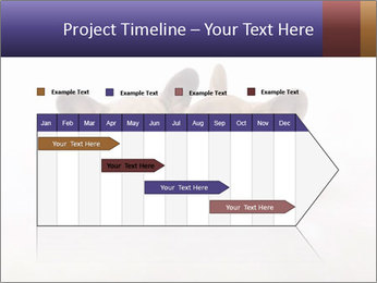 0000072079 PowerPoint Templates - Slide 25