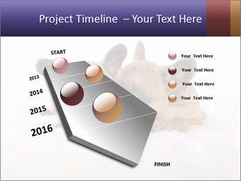 0000072079 PowerPoint Template - Slide 26