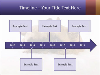 0000072079 PowerPoint Template - Slide 28