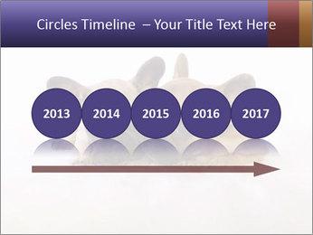 0000072079 PowerPoint Template - Slide 29