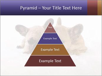 0000072079 PowerPoint Template - Slide 30