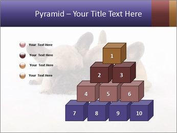 0000072079 PowerPoint Template - Slide 31