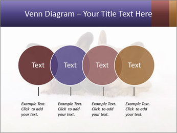 0000072079 PowerPoint Templates - Slide 32