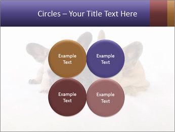 0000072079 PowerPoint Template - Slide 38