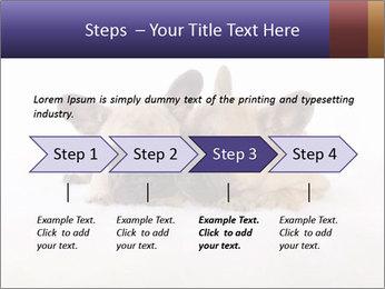0000072079 PowerPoint Template - Slide 4