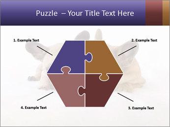 0000072079 PowerPoint Template - Slide 40