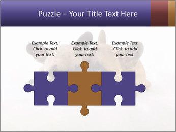 0000072079 PowerPoint Template - Slide 42
