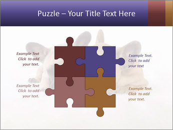 0000072079 PowerPoint Templates - Slide 43