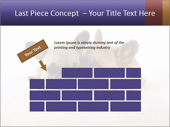 0000072079 PowerPoint Templates - Slide 46