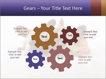 0000072079 PowerPoint Templates - Slide 47
