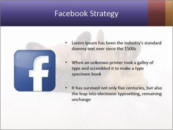 0000072079 PowerPoint Template - Slide 6