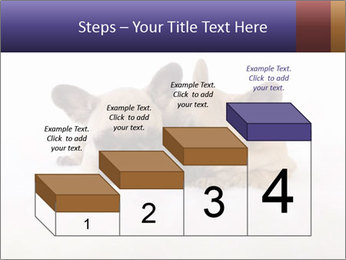0000072079 PowerPoint Templates - Slide 64