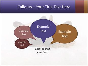 0000072079 PowerPoint Template - Slide 73