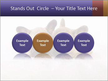 0000072079 PowerPoint Template - Slide 76