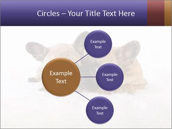 0000072079 PowerPoint Template - Slide 79