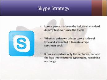 0000072079 PowerPoint Template - Slide 8